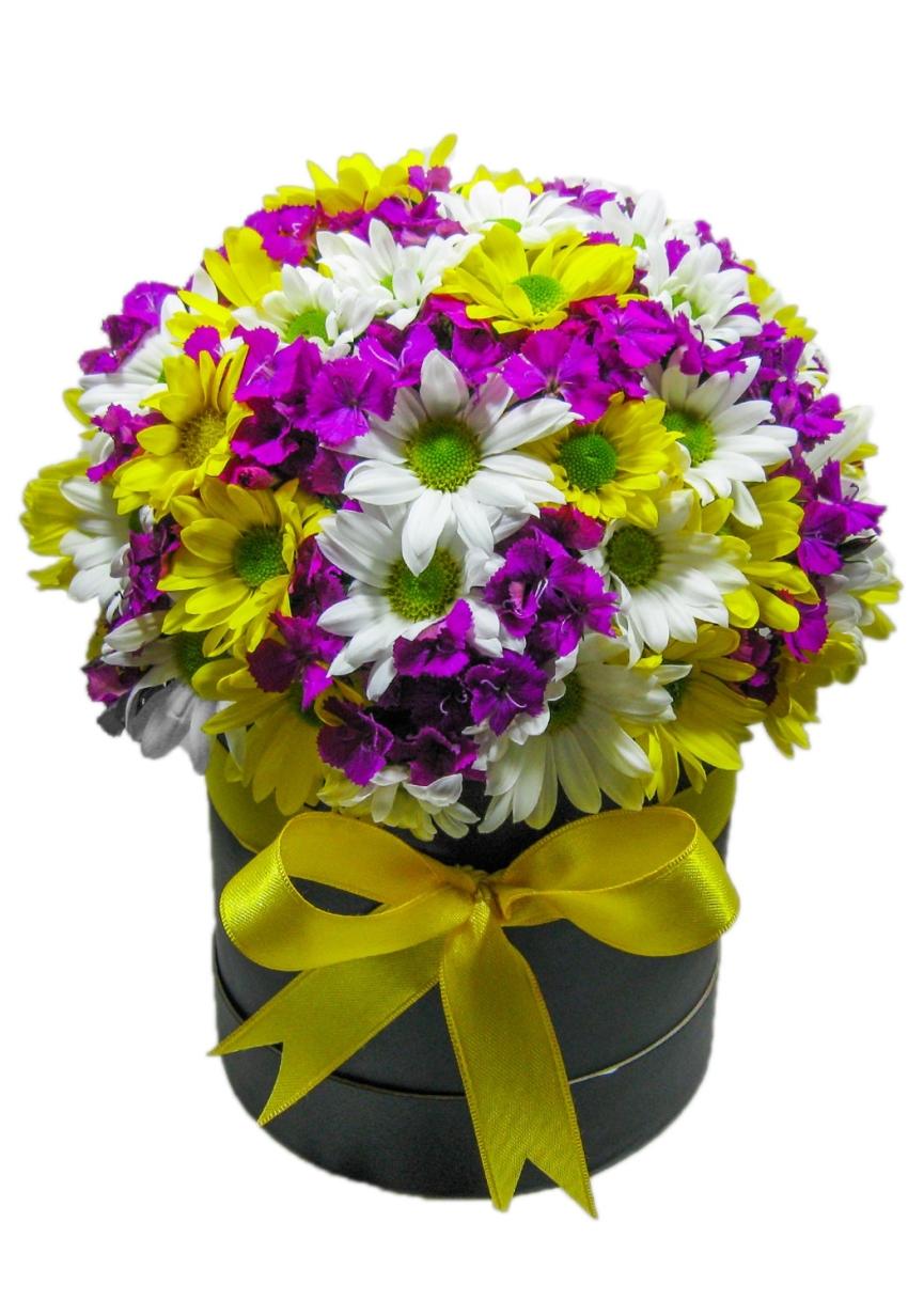 Kutuda Renkli Kır Çiçekleri